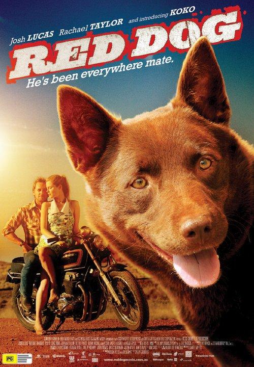 red dog2